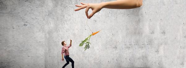 la carotte en récompense