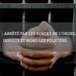 Agen: arrêté par les forces de l'ordre, il insulte et mord les policiers